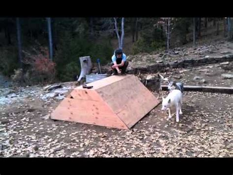 the wolf and the house dog how to build a wolf den from scratch or an extra large
