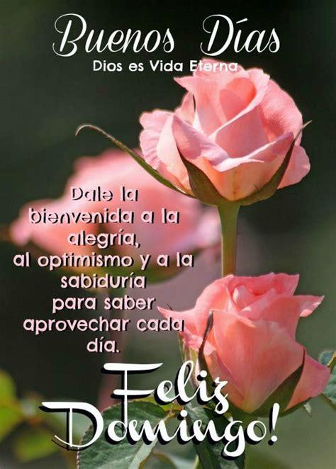 imagenes naturales de buenos dias domingo buenos dias pinterest rosa flores y domingo