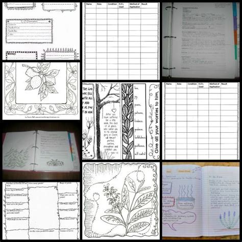 printable essential oil journal 25 best images about essential oil binder on pinterest