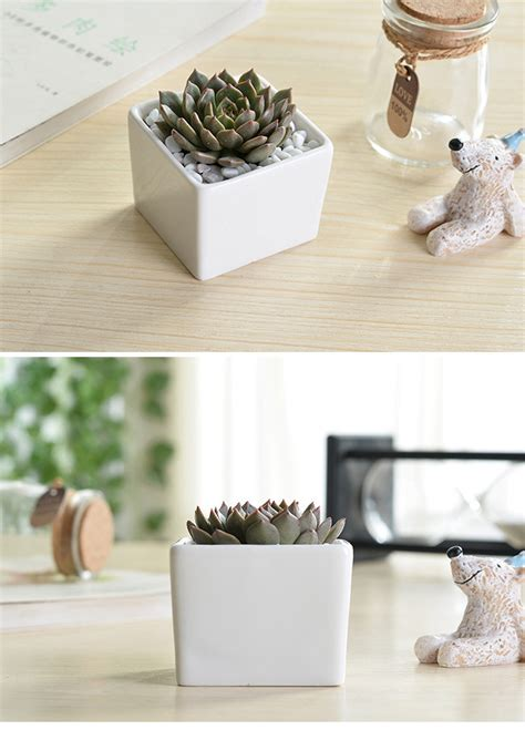 indoor 3 inch small white ceramic square plant pots buy