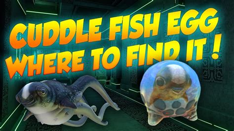 Where To Find Name Changes Cuddle Fish Where To Find It In Subnautica News