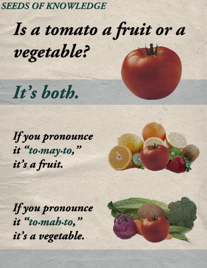 a fruit or vegetable science is a tomato a fruit or a vegetable