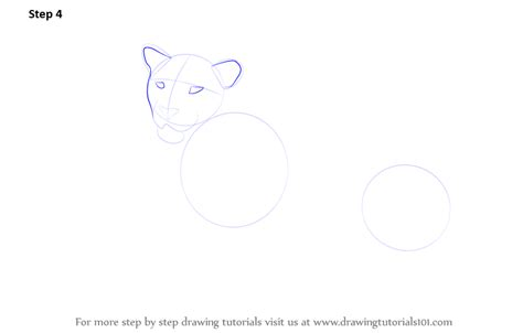 how to make a jaguar learn how to draw a jaguar zoo animals step by step