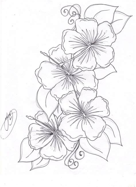 printable little flowers beautiful flower coloring pages free hibiscus flower