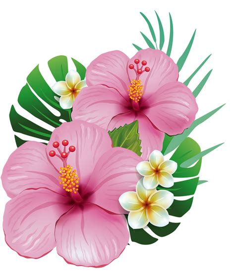 Hawaiian Flowers by Vintage Hawaiian Flower Www Imgkid The Image
