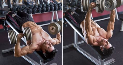 what does decline bench press do how to do dumbbell decline bench press iron man magazine