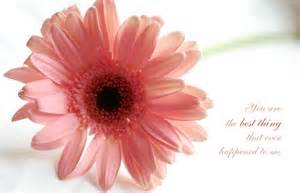 Related pictures romantic flowers animated gifs pictures to pin on