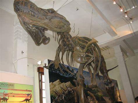 Batuan Dan Fosil By geografi pariwisata geo05friends s