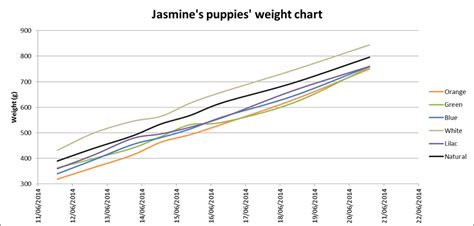 goldendoodle puppy growth chart labradoodle growth chart found a great height and weight