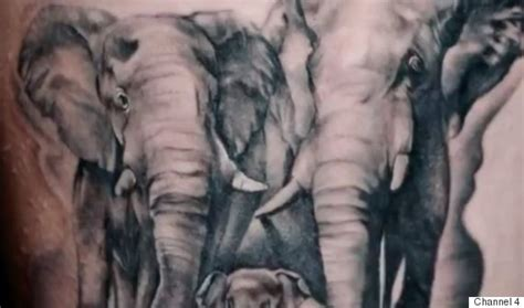 Elephant Tattoo Alton Towers | alton towers victim reveals elephant tattoo to mark