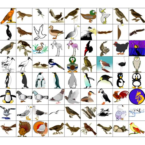 free clipart collection corel draw clipart collection free cliparts
