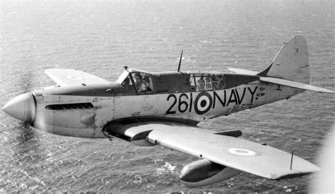 Navy Firefly royal australian navy fairey firefly aircraft of wwii