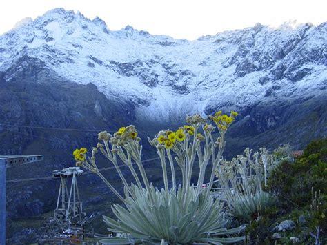 imagenes de paisajes venezolanos pico bolivar nevado venezuela tuya