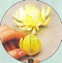 Decoupe Legume Decoration by Decorations Avec Des L 233 Gumes