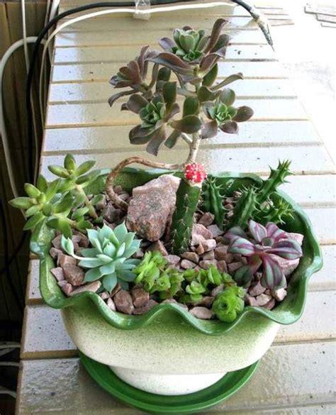 table decorations  centerpiece ideas  succulents