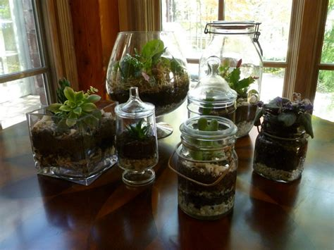 how to make your own green terrarium to keep or give away