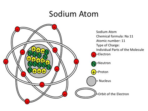 labelled diagram of an atom eric w atom and molecule