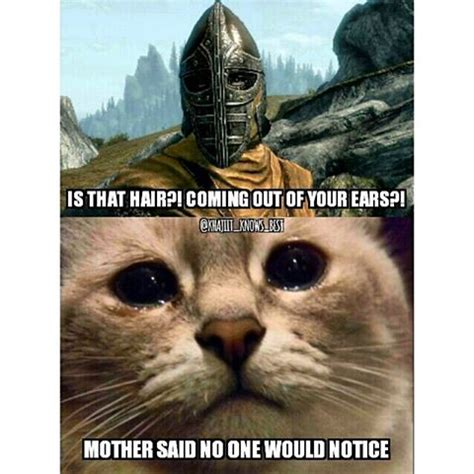 Khajiit Meme - king khajiit khajiit knows best instagram photos and