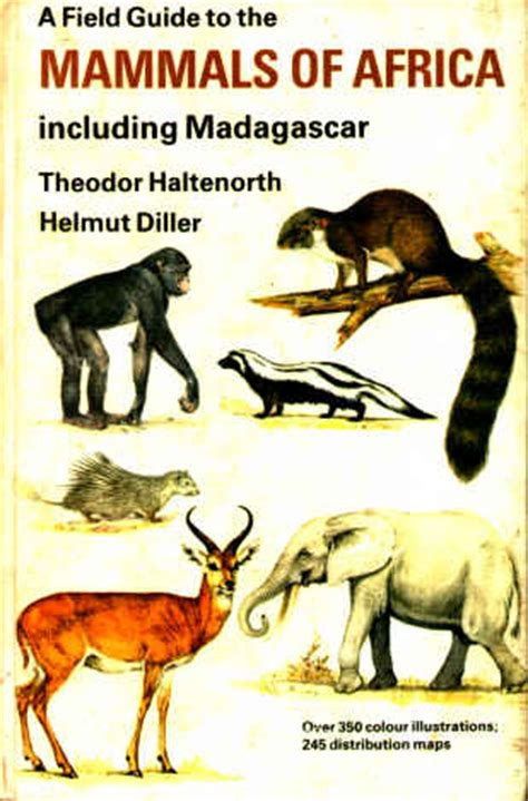field guide to the larger mammals of africa field guides books haltenorth a field guide to the mammals of africa
