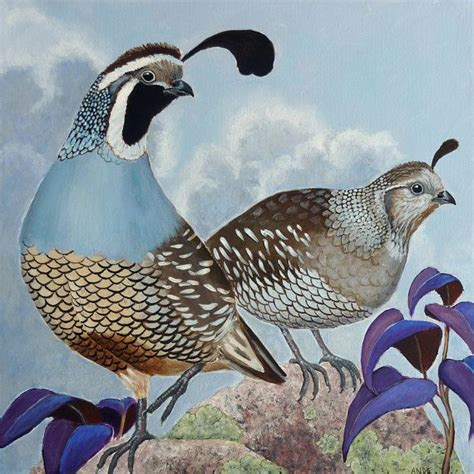 paint color quail 12x12 print of original quail painting by andehallfineart