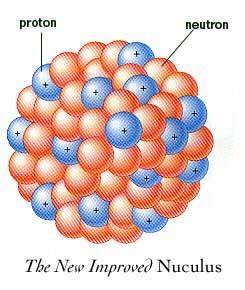 Number Of Protons In Nucleus by Protons And Neutrons Thestudyofthenucleusproject