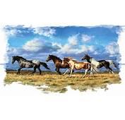 Animals Horse Running Free Horses Animal Art Artwork Chris