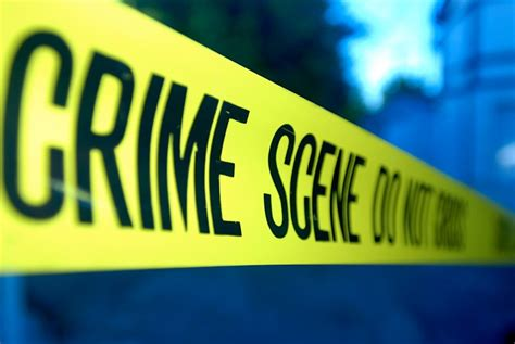 Graphic Design Jobs From Home Usa by Mob Hit Crime Scene Quotes
