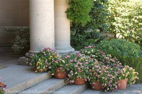Filoli Gardens Coupon by Filoli Gardens And Mansion Tour One Hundred Dollars A Month