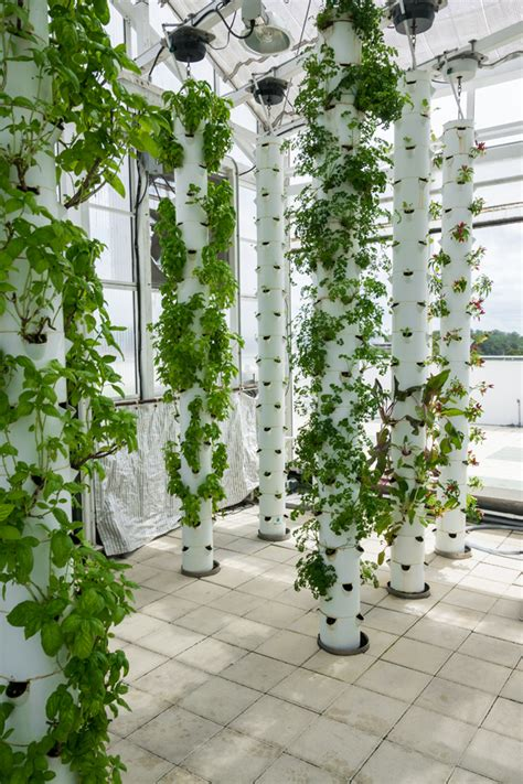 Tower Vegetable Garden The Farm Of The Future Green Sky Growers