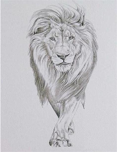 lion tattoos for girls whole for