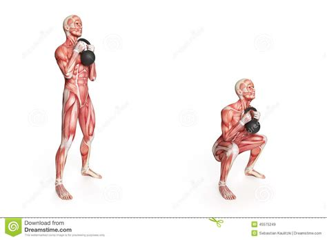 kettlebell swing anatomy kettlebell exercise stock illustration illustration of