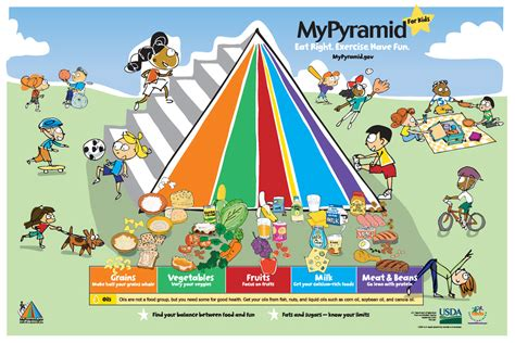 food pyramid why you should follow the healthy food pyramid
