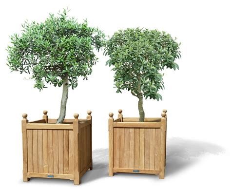Large Wood Planters by Pair Of Large Versailles Planter Teak Garden