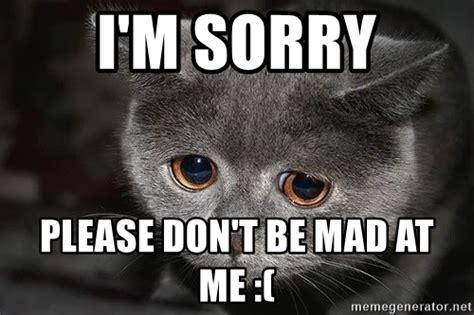 Dont Be Mad At Me Meme - i m sorry please don t be mad at me sadcat meme