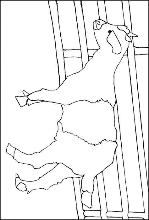 goat face coloring page free goat face coloring pages