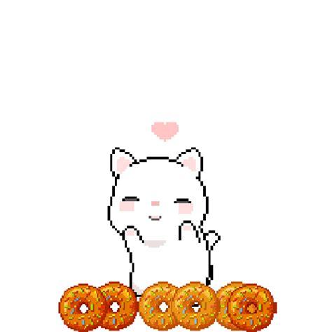 favorite donut    cute bunny