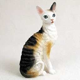 Cat Breeds That Don T Shed A Lot by Most Popular Cat Breeds That Don T Shed A Lot Melpomene Org