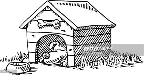 how to your to sleep in a kennel kennel sleeping drawing vector getty images