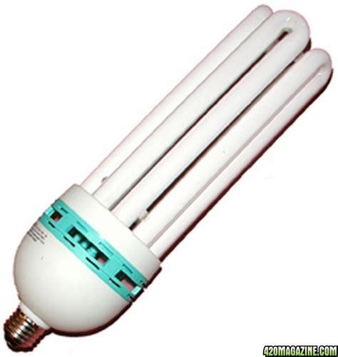 fluorescent light bulbs for growing plants grow light bulbs plant grow tent applied light grow light