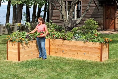 raised beds for gardening elevated cedar raised garden beds the green head