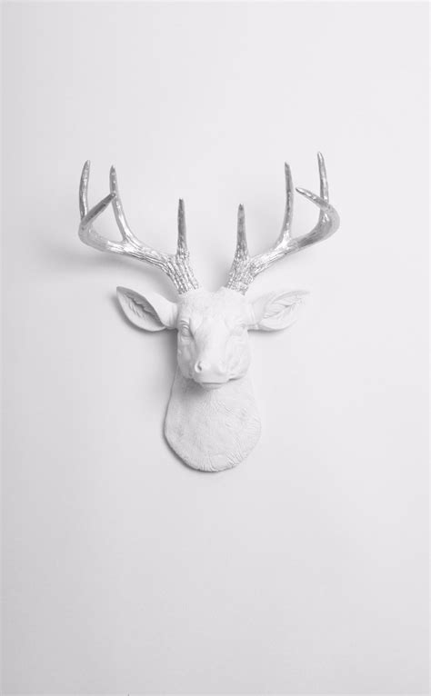 how to get raindear anters white mini white deer wall mount silver antlers the mini frankfurt white faux taxidermy