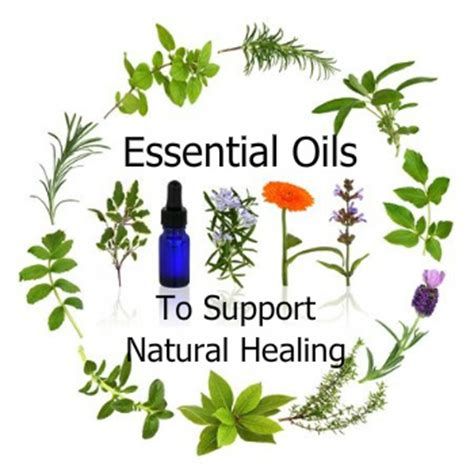 holistic aromatherapy practical self healing with essential oils books aromatherapy treatment articles