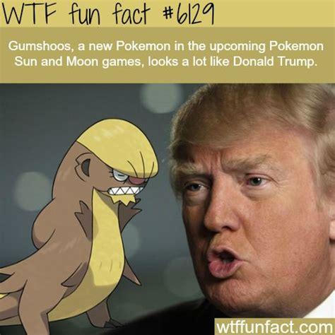 donald trump facts new pokemon that looks like donald trump wtf fun facts