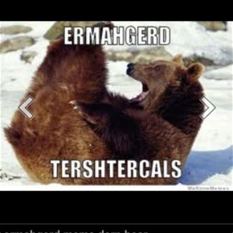 Ermahgerd Animal Memes - ermahgerd pinterest pinterest funny laughing and lmfao