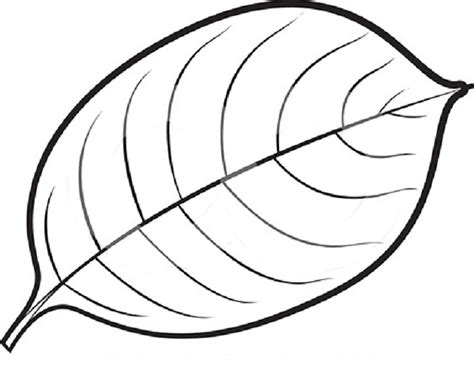 green leaf coloring pages coloring pages leaves clipart best