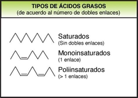 cadenas insaturadas y saturadas 191 por qu 233 las grasas saturadas son saturadas