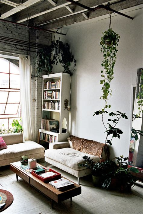 home decor plants living room isabel wilson s loft life sfgirlbybay