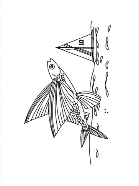 Flying Fish Coloring Pages Download And Print Flying Fish Flying Fish Coloring Page