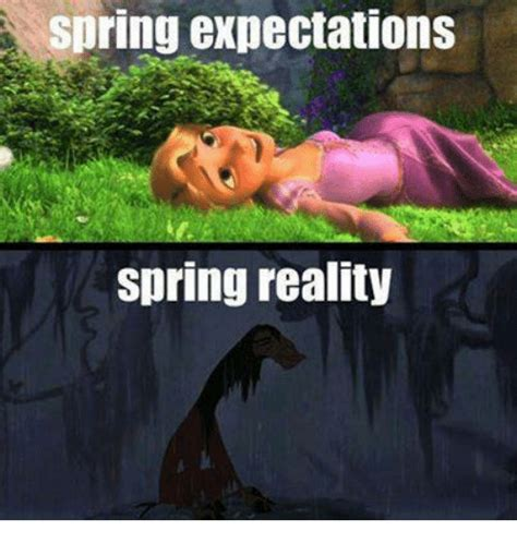 Spring Meme - 25 best memes about spring spring memes