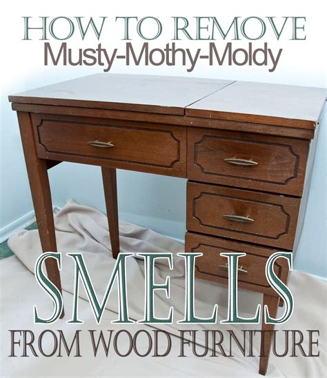 Salvaged Inspirations Easy Tips On How To Remove Musty